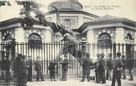 Paris 5e cartes postales des annes 1900 for Jardin 5e paris