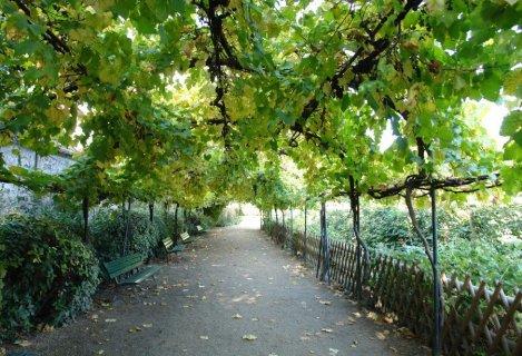 Le jardin catherine labour for Jardin catherine laboure