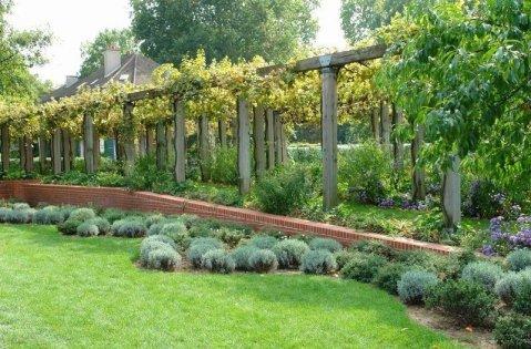 Le parc de bercy les parterres - L univers du jardin les rues des vignes ...