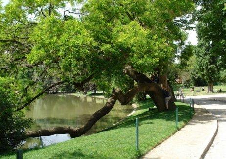 park buttes chaumont